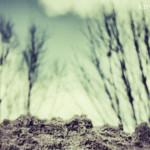 knynk 13.010, geselecteerde foto voor fotoroute 'Knipoog naar Gaasterland'