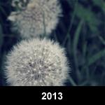 2013_button